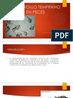 Desarrollo Temprano en Peces (1)