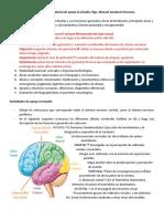 Material de apoyo al estudio.docx