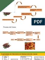 Flujograma de Produccion Del Cacao
