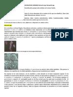 Cocos Gram Negativos. Neisseria y Moraxella
