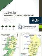Introduccionfernanda Skewes Centro de Derecho Ambiental PDF 128 Mb (1)