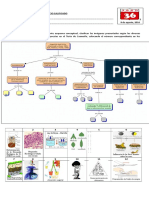 Bio y Lab I_Comprobación de Lectura_eL PARRILLERO cIENTÍFICO.docx