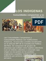Pueblos Indigenas 1