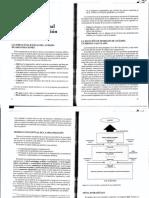 Modelo Conceptual de Una Organización