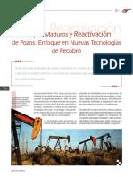 Campos Maduros REACTIVACIÓN_articulo.pdf