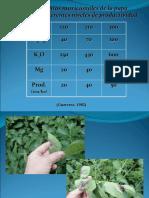 Fertilización Definitiva Parte II