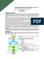 Evaluación Del Funcionamiento de Una Planta de Tratamiento de Efluentes
