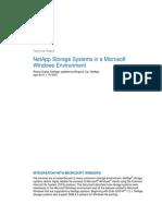 NetApp Storage System Windows Environment