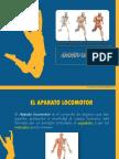 APARATO LOCOMOTOR - ANATOMÌA HUMANA.ppt