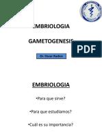 01 - Gametogenesis (1)