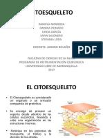 Citoesqueleto diapositivas