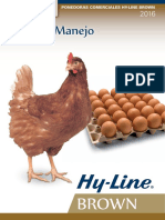Hy-Line Brown - 2016