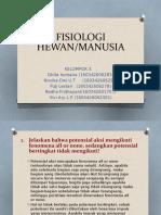 fiswan.pptx