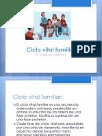 Psicología de La Familia 3 (1) Ciclo Vital