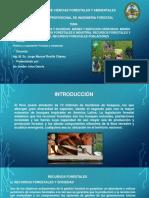 Tema 4_Recursos Forestales y Sociedad_Bienes y Servicios Ofrecidos_y_producidos