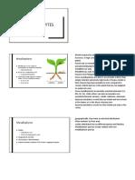 Report on Metallophytes