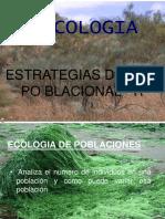 Estrategia Poblacional r