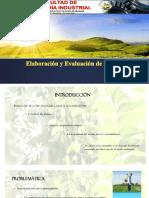 Elaboración y Evaluación de Proyecto(Exposicion )