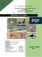 Recurso Flora