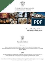 Aida Fajardo Radiaciones Ionizantes Final