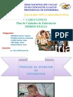 134285142 Caso Clinico Hidrocefalia