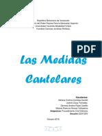 Trabajo Medidas Cautelares.docx