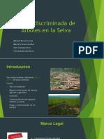 Tala Indiscriminada de Arboles en La Amazonia