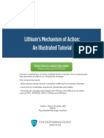 Lithiums Mechanism of Action