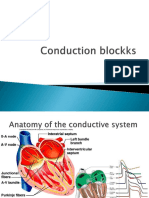 Lecture 5 Conduction Blocks (1)