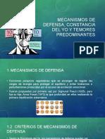 Mecanismos de Defensa, Constancia Del Yo y