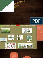 Básico en Agricultura Ecológica