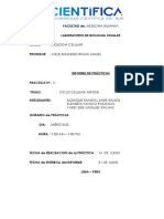 Informe Bio 11