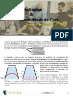 Avaliação e Estabilidade do Core