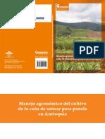 Manejo agronómico del cultivo de la caña de azúcar para panela en Antioquia .pdf