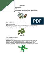 PLANTAS MEDICINALES 60.docx