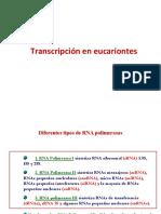 TranscripcEuc_25325.pdf