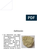 DIATOMITAS