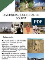 2ladiversidadculturalenbolivia 150612190747 Lva1 App6891