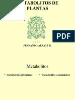 Metabolitos plantas 1