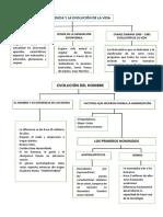 Ficha de Historia