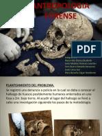 Antropologia Forense Exp