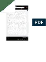 Evidencia 7 - Complemento.docx
