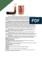 Apostila - Doenca Sexualmente sexuais.pdf