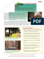 ProtectingTheCountryside_RuralRoads.pdf