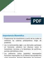Estructura de Aminoácidos.