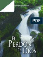 Br SS602 Perdon ESP WEB