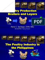 poultryproduction.ppt