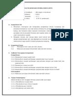 RPP 3.13 jun.doc