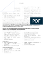 PATOLOGÍAS.docx