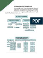 6. Tétel_A Kondicionális Képességek És Fejlesztésük